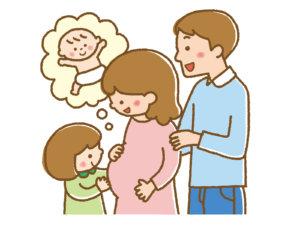 pregnancy-understanding